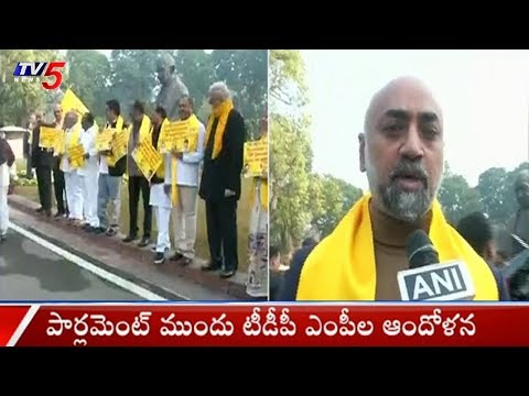 TDP MPs Protests At Parliament Over Special Status For AP | TV5News