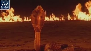 Devi Telugu Movie Scenes   Old Man Died While Saving Snake   AR Entertainments