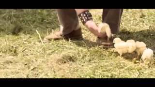 Gulmeli pirikolar