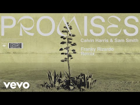 Calvin Harris Sam Smith - Promises Franky Rizardo Remix