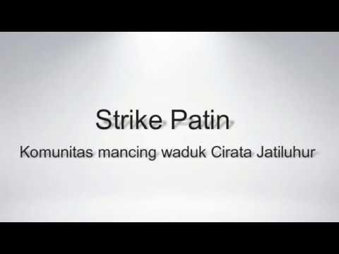 Strike Patin di Waduk Cirata Jatiluhur lapak Cipicung