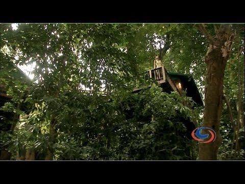 Khao Sok National Park - Thailand's 'Off-the-Beaten-Track' Jungle Holiday Escape