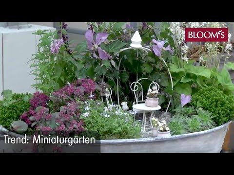 Miniaturgärten | Der Neue Trend Für Balkon Und Terrasse