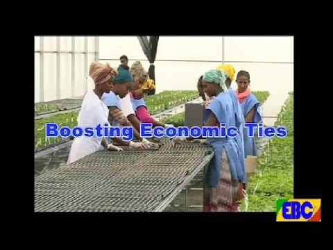 EBC BUSINESS-BOOSTING  ECONOMIC TIES.. August 16 2016