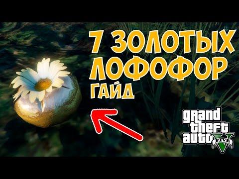 7 ЗОЛОТЫХ ЛОФОФОР В GTA 5