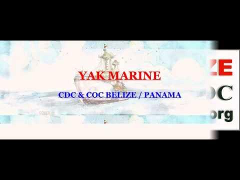 NIGERIA - BELIZE (discharge) book | BELIZE CDC