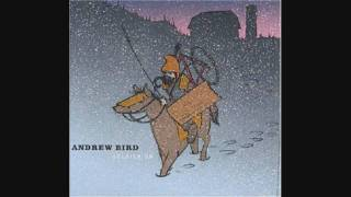 Watch Andrew Bird Sic Of Elephants video