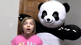 PANDA IN MY ROOM.