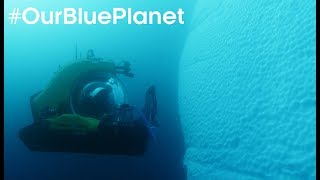 Pioneering Scientist Journeys 1000m Deep In Antarctica #OurBluePlanet - BBC Earth