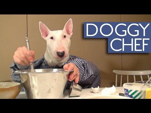 犬との二人羽織りで料理を作ります。