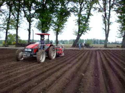Sembradora de zanahorias Agricola Italiana SNT 3 290