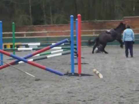 Naughty Bucking Pony