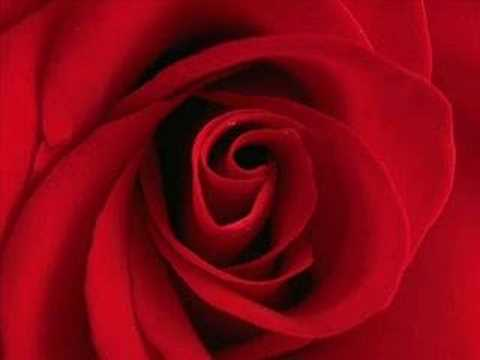Vandaag is rood !