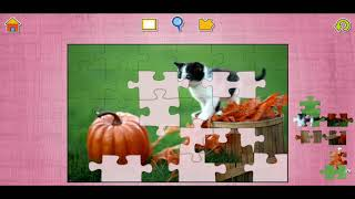 Cute Cats And Kittens Fun Jigsaw Puzzle Video For Kids Apps Gameplay