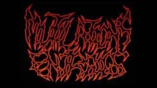 Download Lagu Mutilations Entrails - Devoured Forensic Ejaculation Gratis STAFABAND