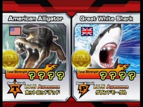 Animal Kaiser American Alligator vs Great White Shark