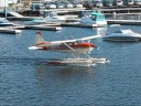 Float planes at the Parry Sound Harbor, Cessna 180 and Found Brothers FBA-2C1