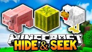 Minecraft HIDE and SEEK! (Block Hunt) w/Lachlan & PrestonPlayz