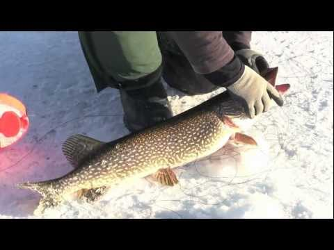 Ice Fishing: Tips for Pike & Walleye on Rainy Lake -- In-Depth Outdoors,
