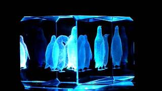 Penguins Marching 3d Laser Etched Crystal