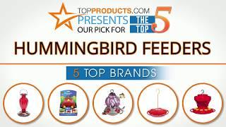 Best Hummingbird Feeder Reviews 2017 – How to Choose the Best Hummingbird Feeder