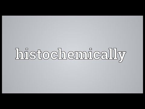 Header of histochemically
