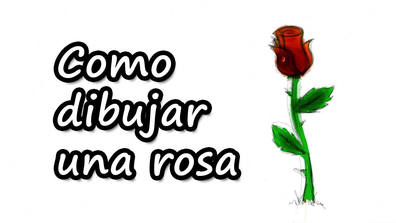 Como dibujar una rosa f cil y r pido para el d a de san - Como secar una rosa ...