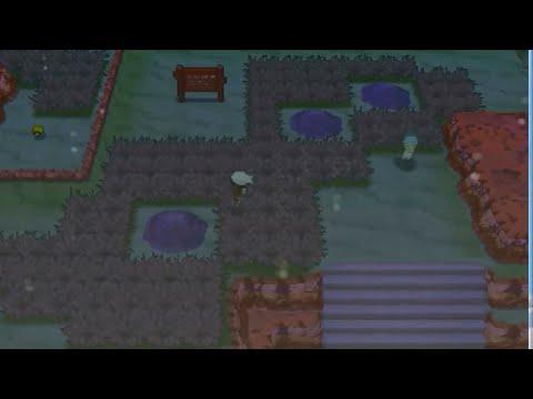 Pokemon Omega Ruby: Part 13! Fallarbor Town!