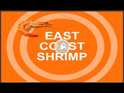 3-Minute Market Insight - Shrimp Prices Increased, Short Supply, Lowest Biomass in recent History