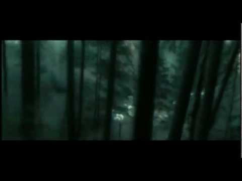 Смысловые галлюцинации - Охотники