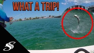 Surprise Cuda Attack, Flipped Kayaks in Shark Infested Waters & Snakes!