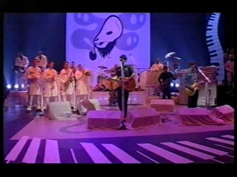 Super Furry Animals - Northern Lites (live on Later)
