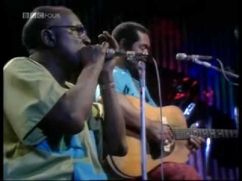 Sonny Terry and Brownie McGhee - Hootin' the blues