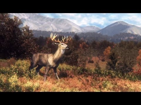 Big Game Hunter 2014 - Охота на кабана #2