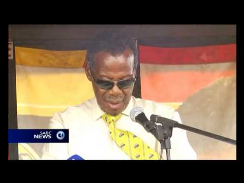 IFP getting stronger: Buthelezi