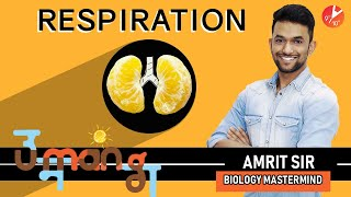 Life Process | You NEED to KNOW For CBSE Class 10 BOARDS | Respiration - 2 | Pulmonary Respiration