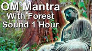 Om mantra 1hour full night meditation with forest sound - Zen Music For Meditation