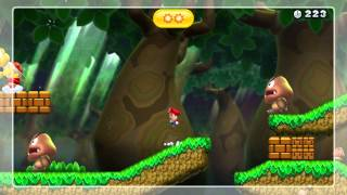 Be Gentle to Giants Gold Medal - New Super Mario Bros. U (No Damage)
