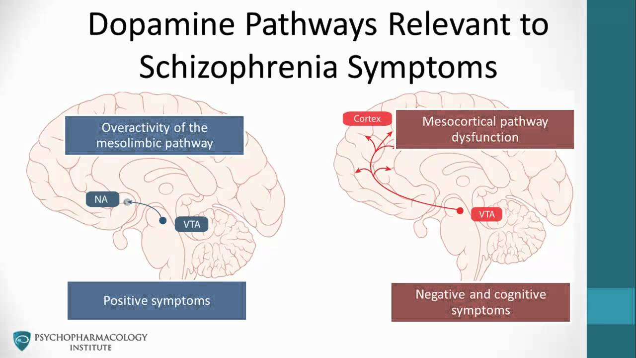 an analysis of the symptoms diagnosis and treatment of schizophrenia a mental disease • schizophrenia is a costly disease both from a schizophrenia treatment mental disorder, the additional diagnosis of schizophrenia is made.