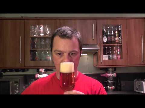 Sly Fox Route 113 IPA By Sly Fox Brewing Company | American Craft Beer Review