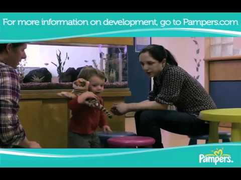 Children Growth Steps Childhood Development Stages Video
