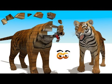 CUBE BUILDER for KIDS (HD) - Build a Tiger for Children - AApV