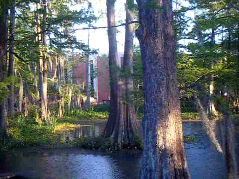 University of Louisiana at Lafayette, Louisiana, Cypress Lake Video