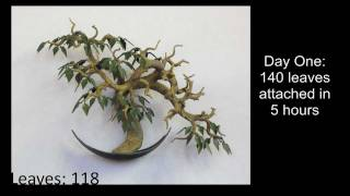 How To Mimic A Tree's Canopy For Origami Bonsai