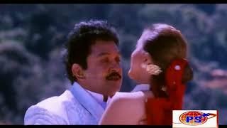 Thirumalai Nayagane    திருமலை நாயகனே    S  P  B ,Sumangali    Love Duet H D Song