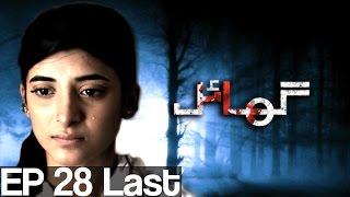 Ghayal - Episode 28 ( Last )| Aplus