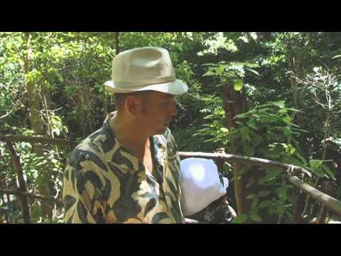 Luxury Camping in Moyo Island  - Rough Guide