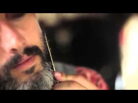 Adam Pollina Talks About The Dandy Bear Grooming Comb