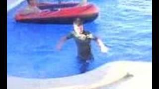 zwembad in duwen