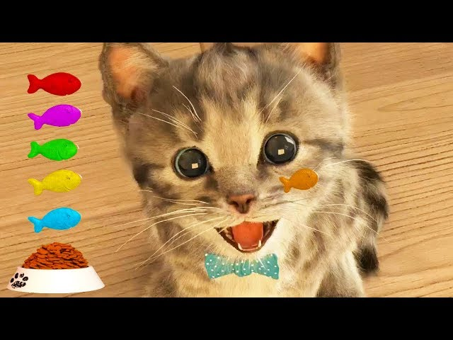 Play Fun Pet Care Kids Game -Little Kitten My Favorite Cat - Fun Cute Kitten For Children amp Toddlers